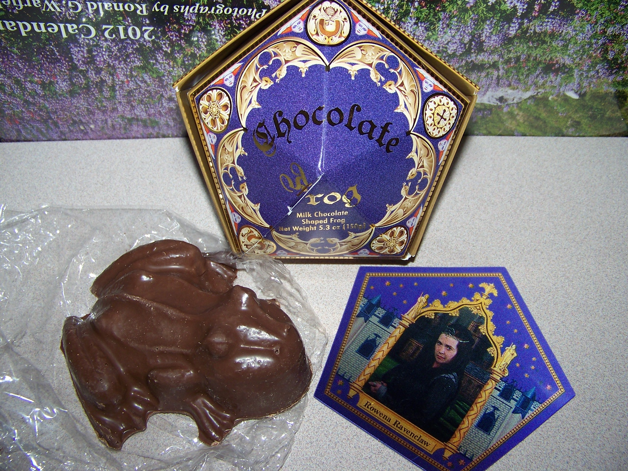 I purchased a Chocolate Frog at Honeydukes.  When I got home I opened the box (seen at top).  It contained a large frog, which was delicious, but it didn't go hopping about like the ones Harry and Ron bought, darnit!  :-)  It did include a wizard trading card, and mine featured Rowena Ravenclaw, who was one of the founders of Hogwarts.  Besides the frogs, Honeydukes also sells all manner of magical sweets like Fizzing Whizbees and Bertie Bott's Every Flavour Beans.<br /> [Universal Islands of Adventure - Wizarding World of Harry Potter]