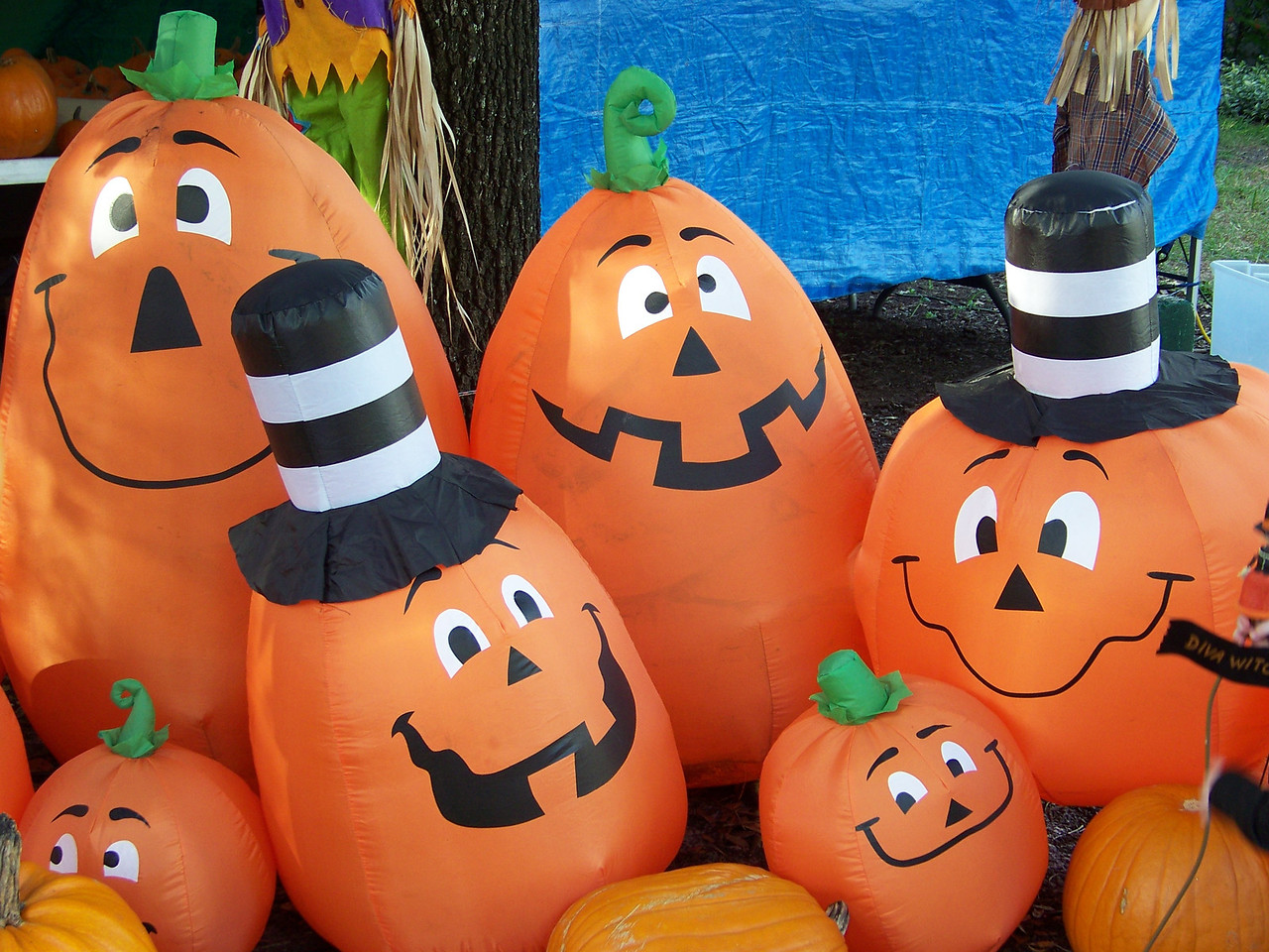 Halloween decorations at the pumpkin patch.<br /> [Celebration, Florida]