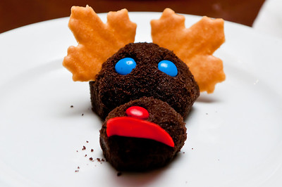 "Chocolate ""Moose"" Chocolate Mousse rolled in Toasted Chocolate Crumbs with Maple Leaf Antlers"