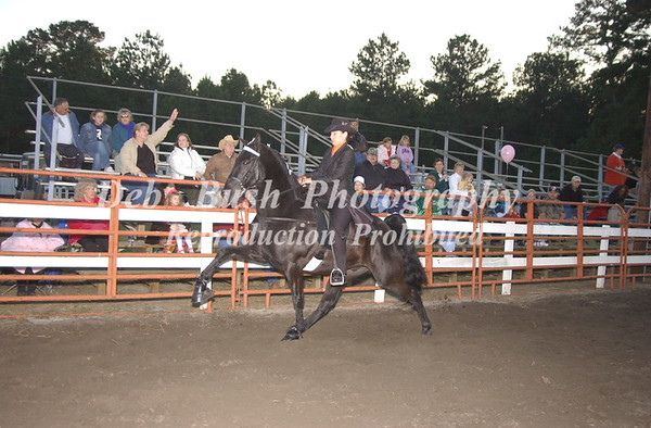 CL 17 AMATEUR OWNED & TRAINED SPECIALTY