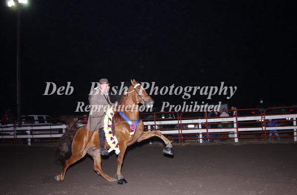 CL36 WALKING HORSE CHAMPIONSHIP