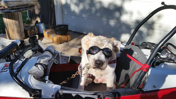 Walter's First Ride