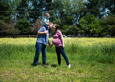 Waltz Family Maternity Shoot 5-21-17