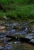 UpACreek - 20120901-0037