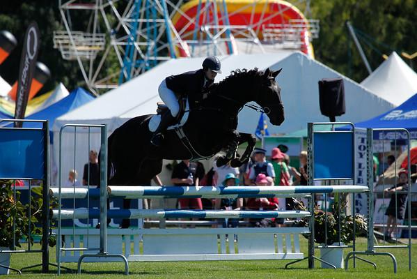 Fri Horse TA5