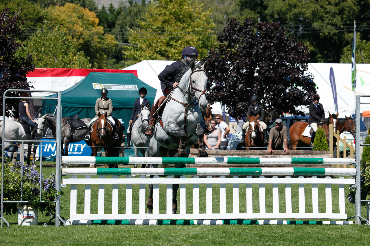 WAP Fri-Horse TA5_8269