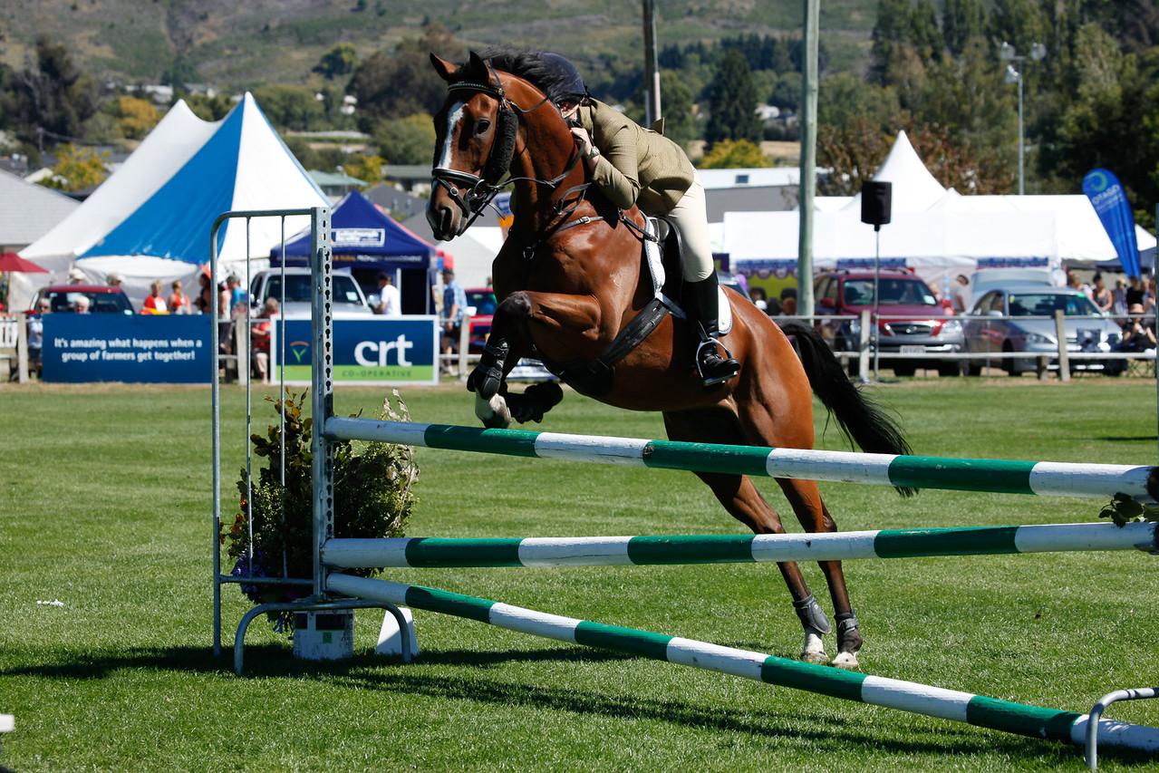 WAP Fri-Horse TA5_8334