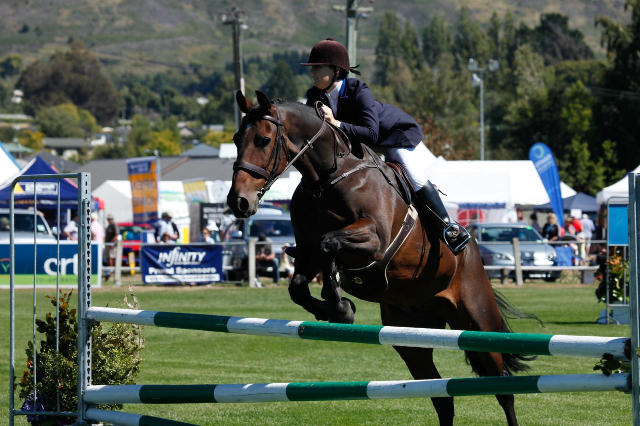 WAP Fri-Horse TA5_8307