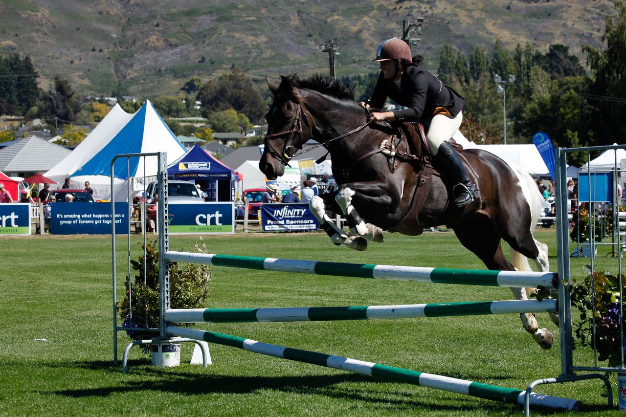 WAP Fri-Horse TA5_8337