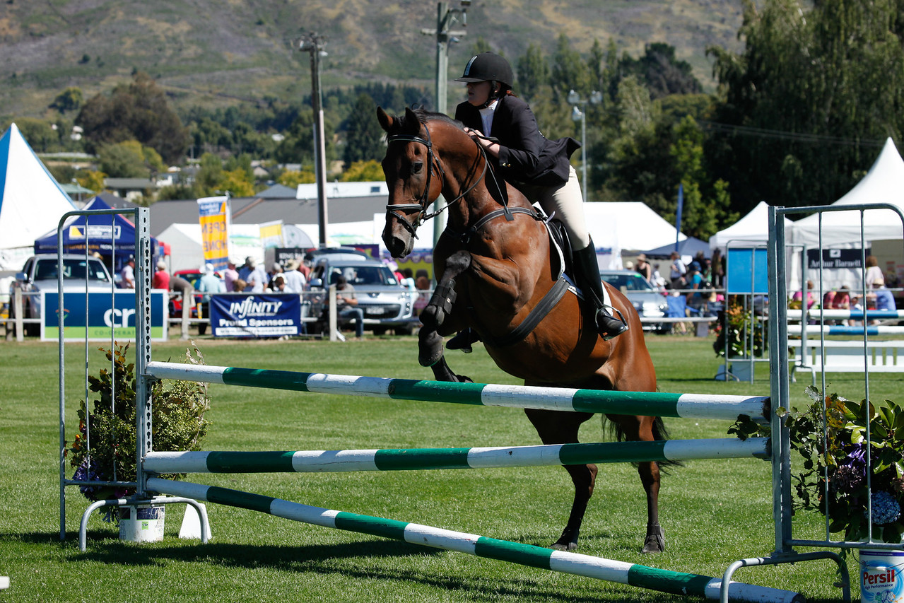 WAP Fri-Horse TA5_8299