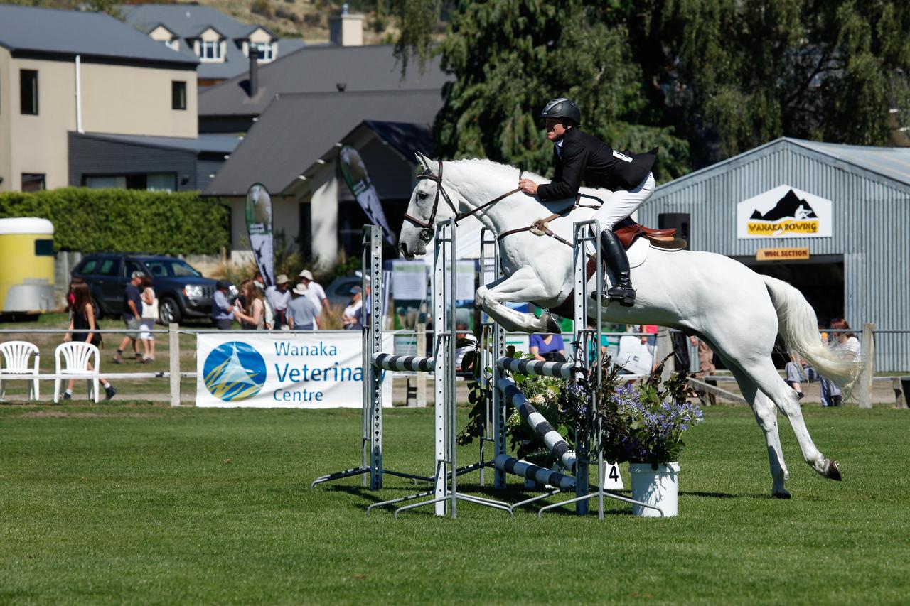 WAP Fri-Horse TA5_8315
