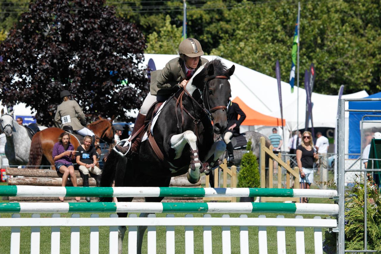WAP Fri-Horse TA5_8344