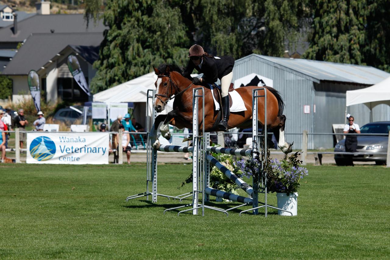 WAP Fri-Horse TA5_8292