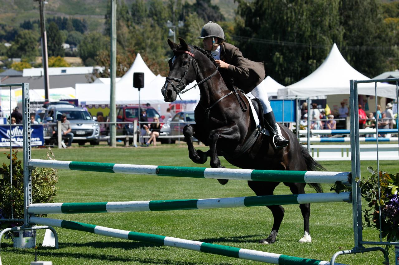 WAP Fri-Horse TA5_8285