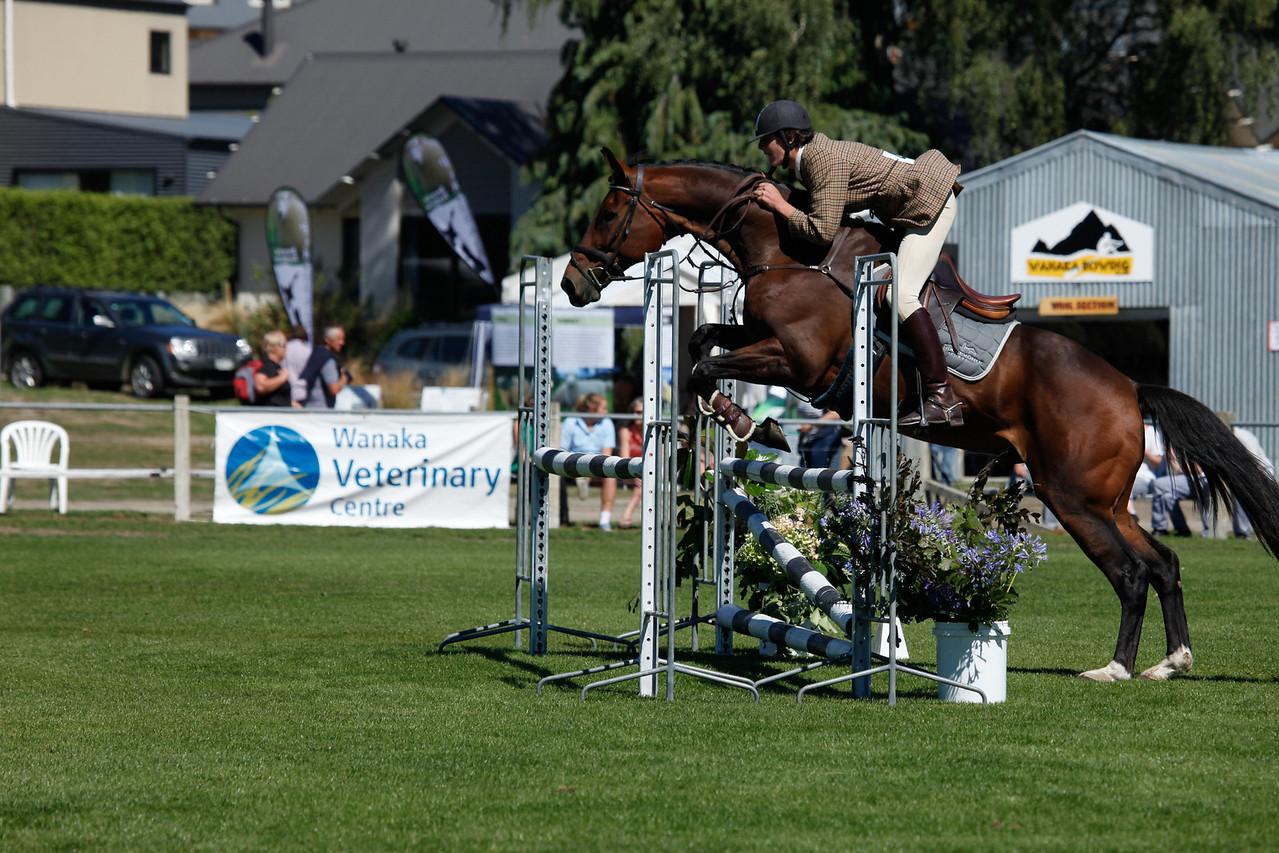 WAP Fri-Horse TA5_8338