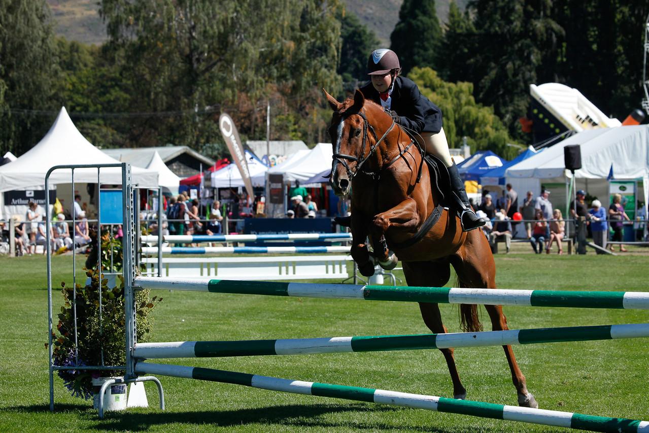 WAP Fri-Horse TA5_8280