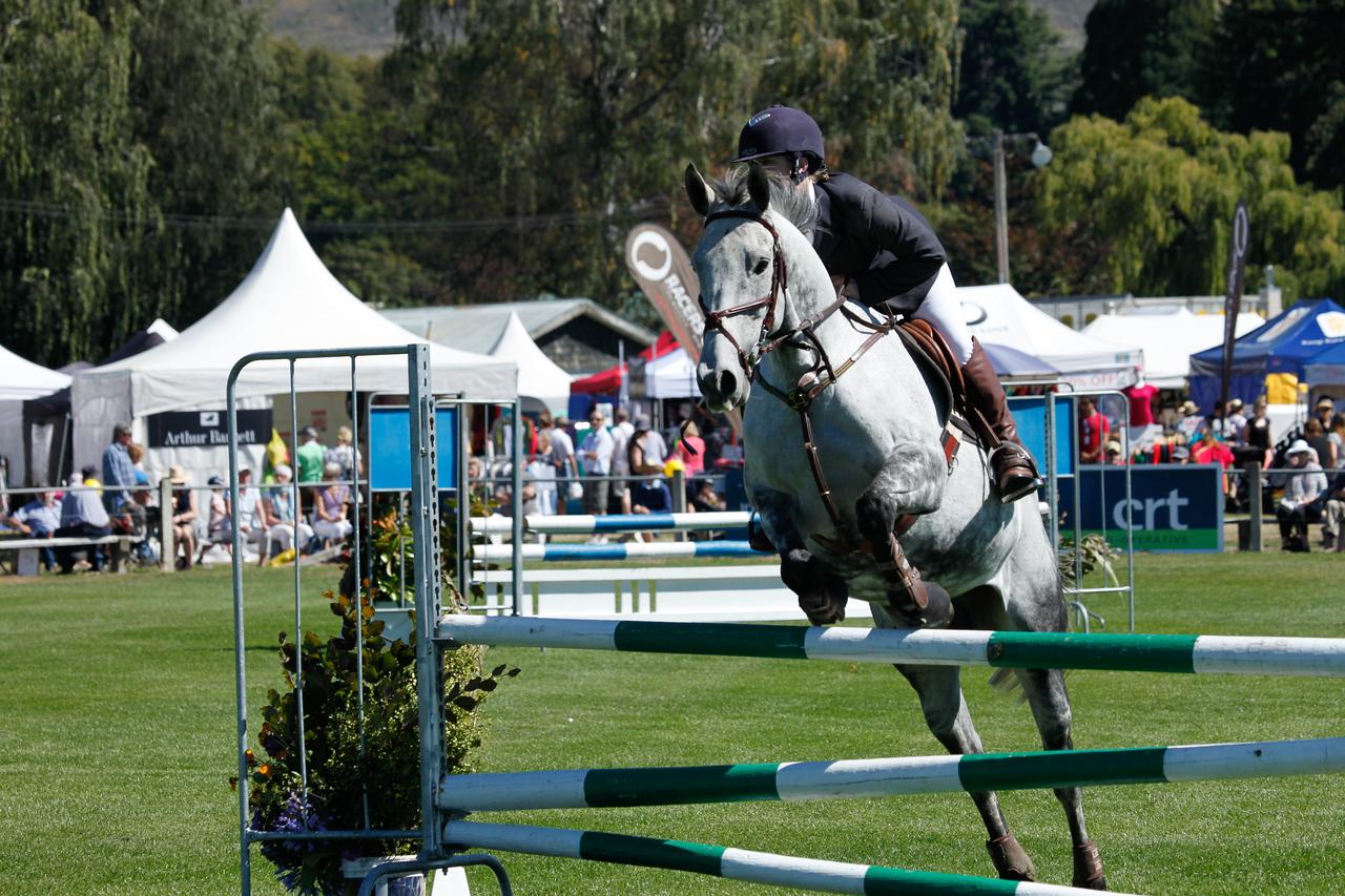 WAP Fri-Horse TA5_8270