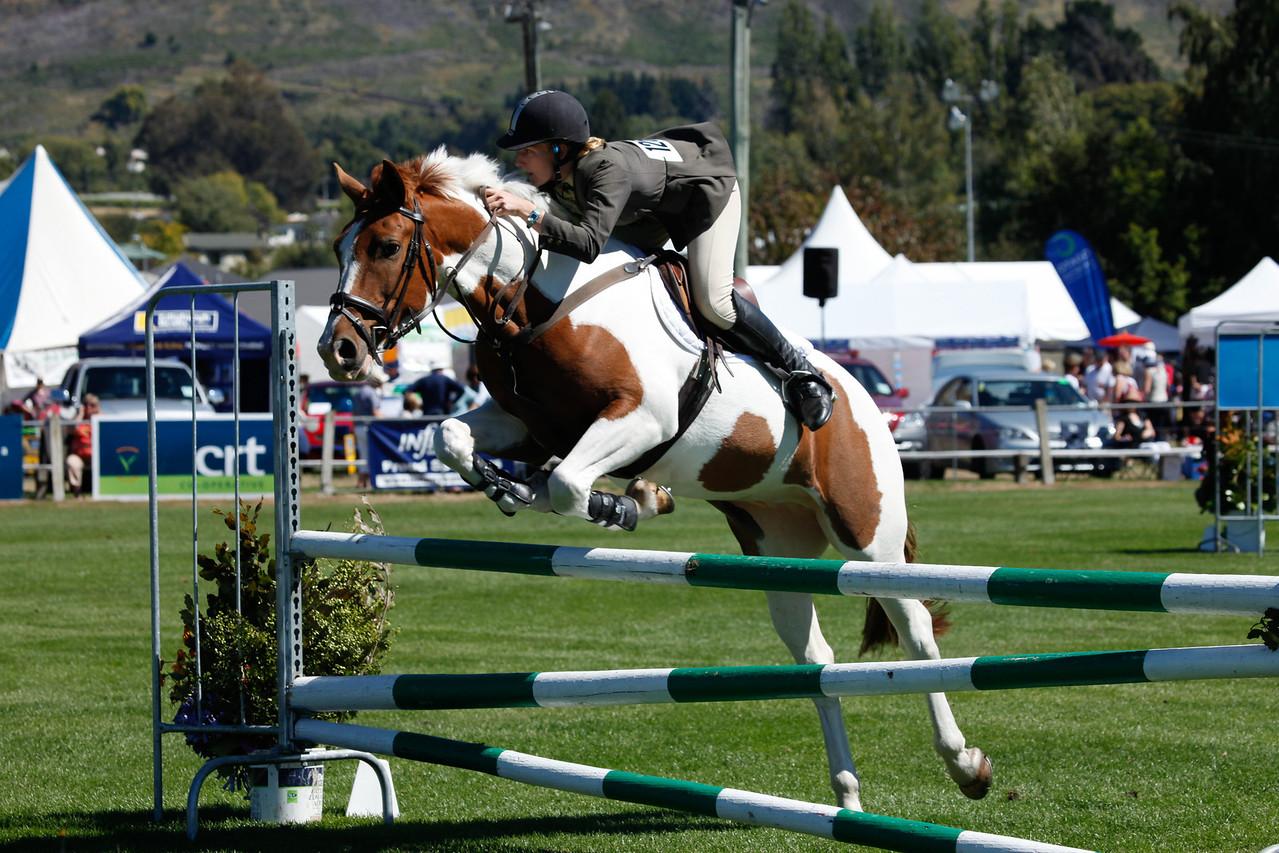 WAP Fri-Horse TA5_8327