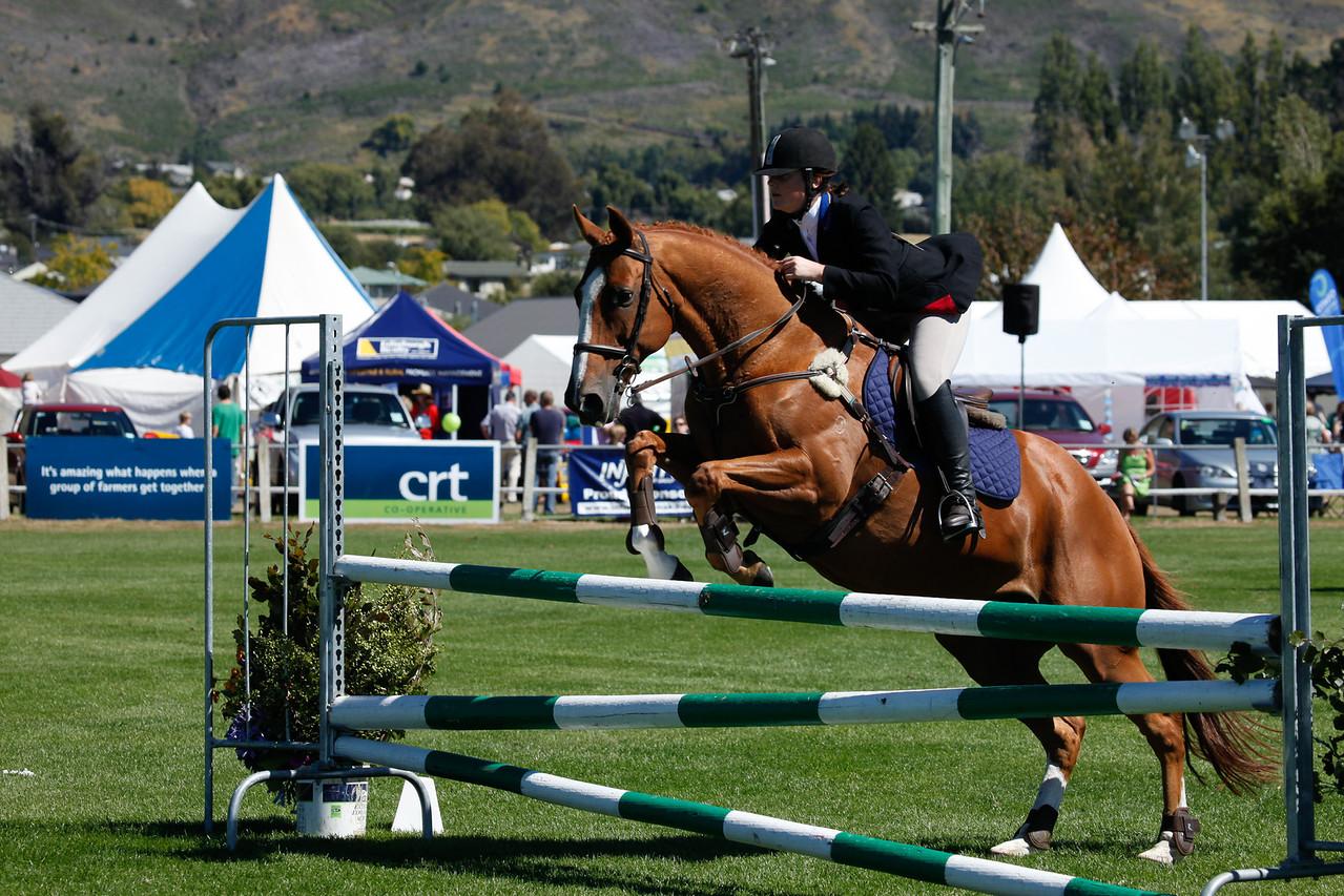 WAP Fri-Horse TA5_8296