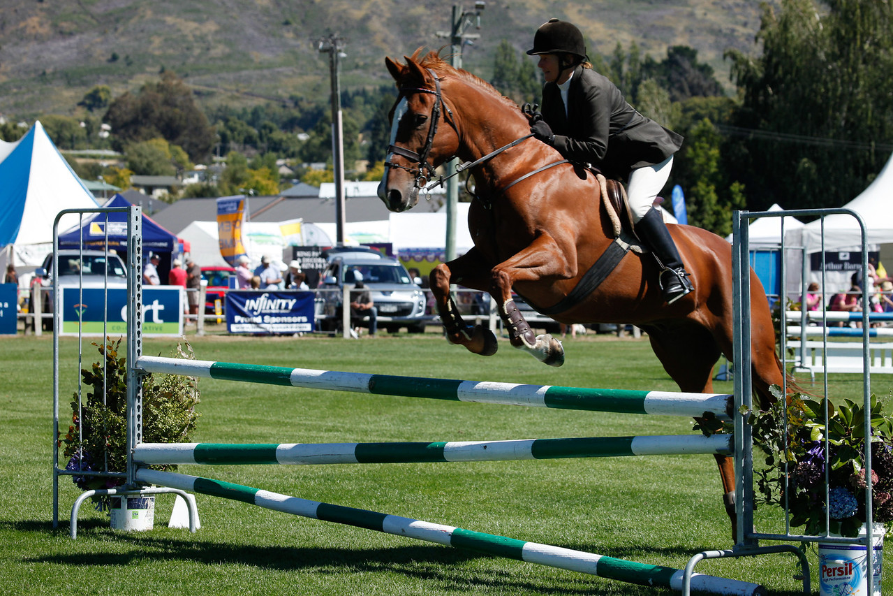 WAP Fri-Horse TA5_8302