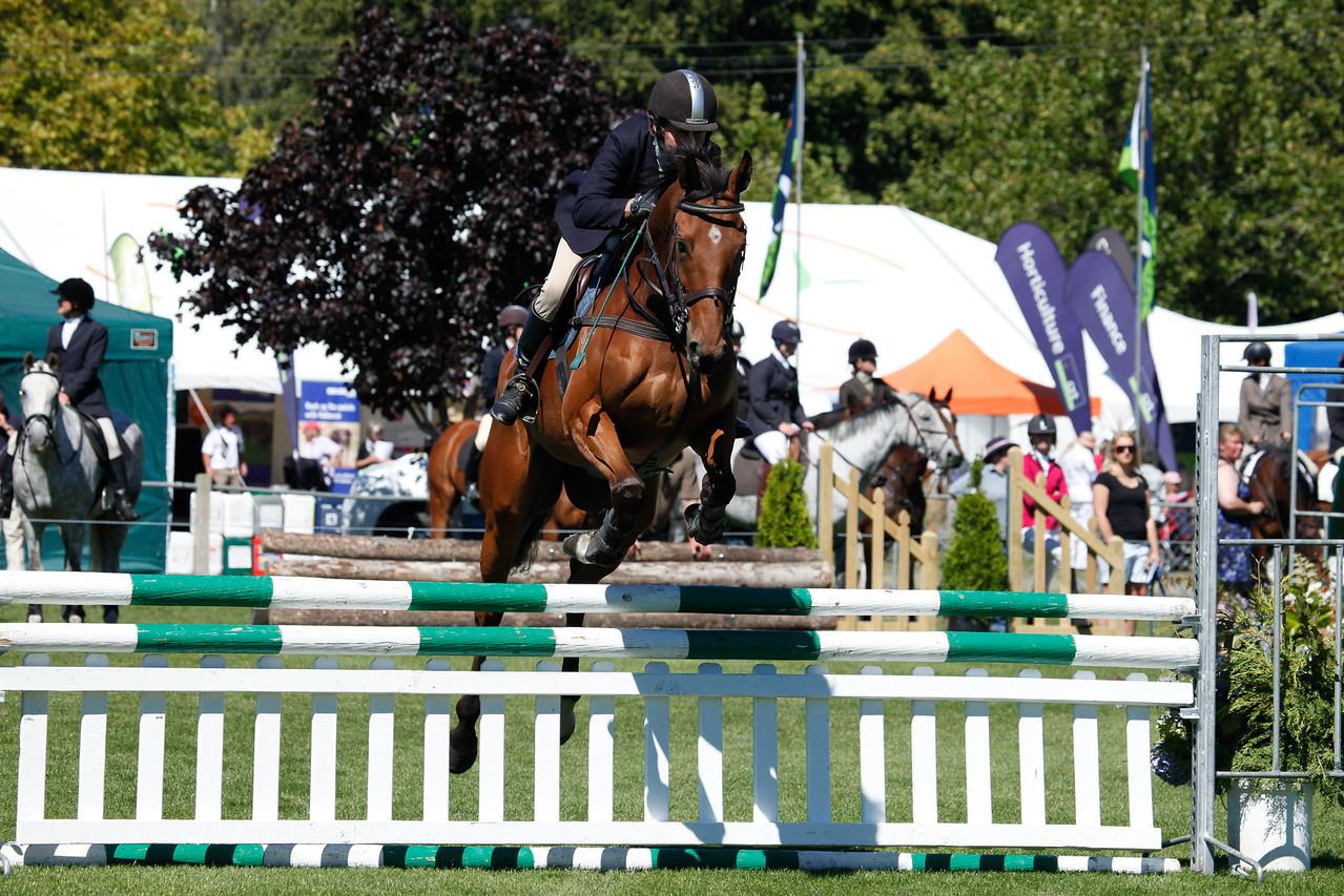 WAP Fri-Horse TA5_8265
