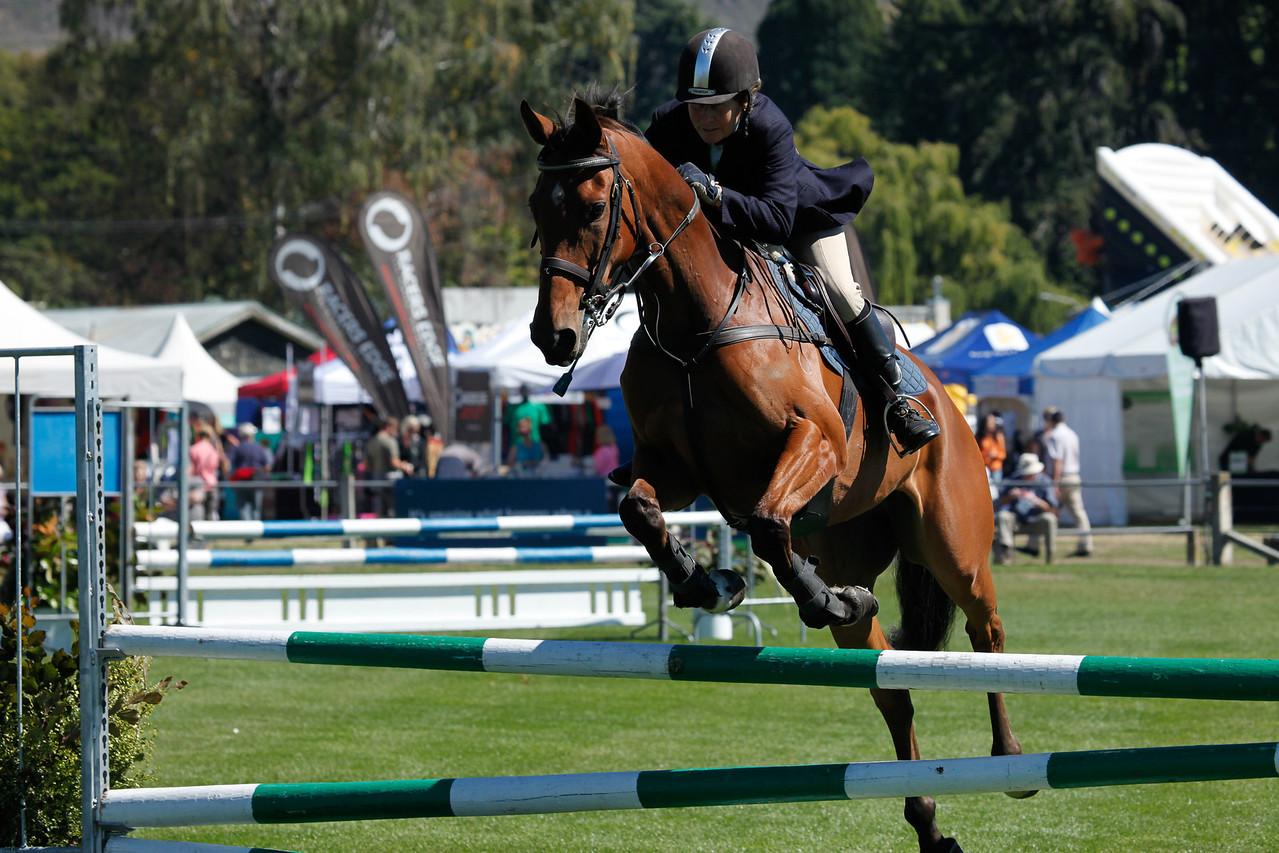 WAP Fri-Horse TA5_8266
