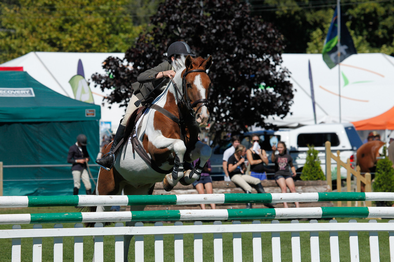 WAP Fri-Horse TA5_8320