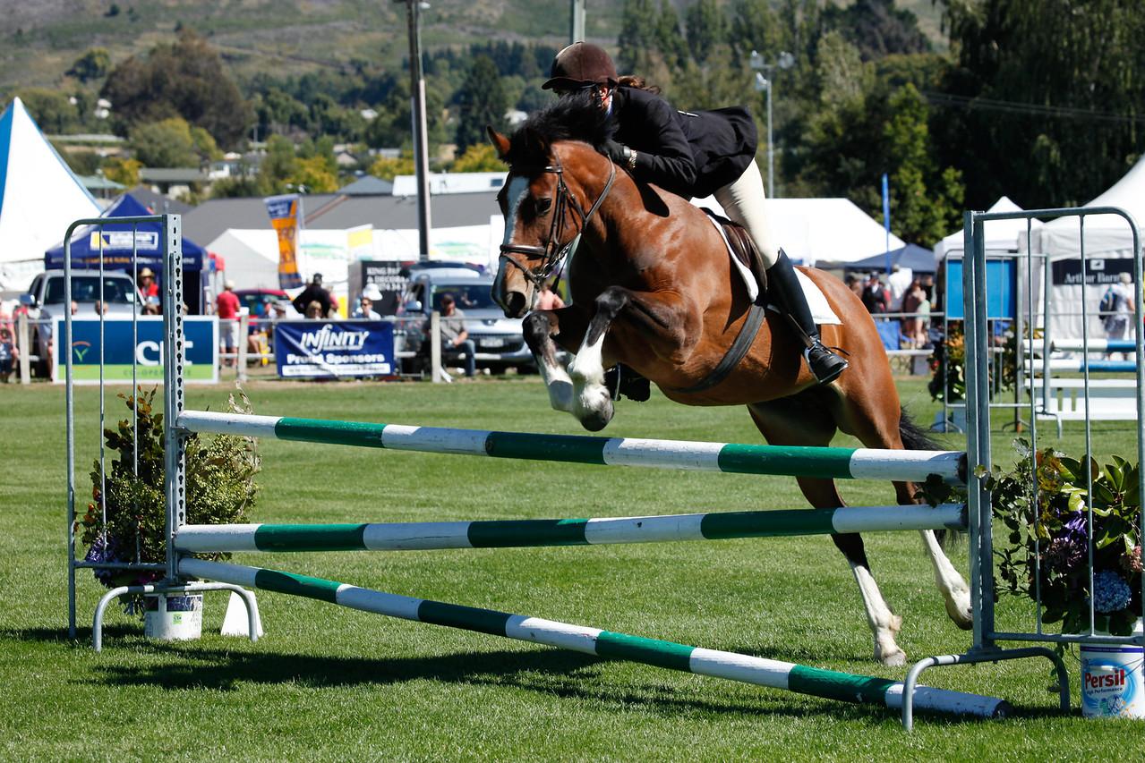 WAP Fri-Horse TA5_8293