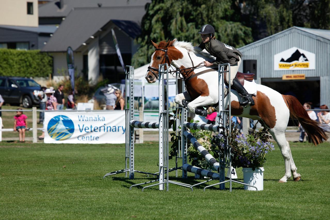 WAP Fri-Horse TA5_8324