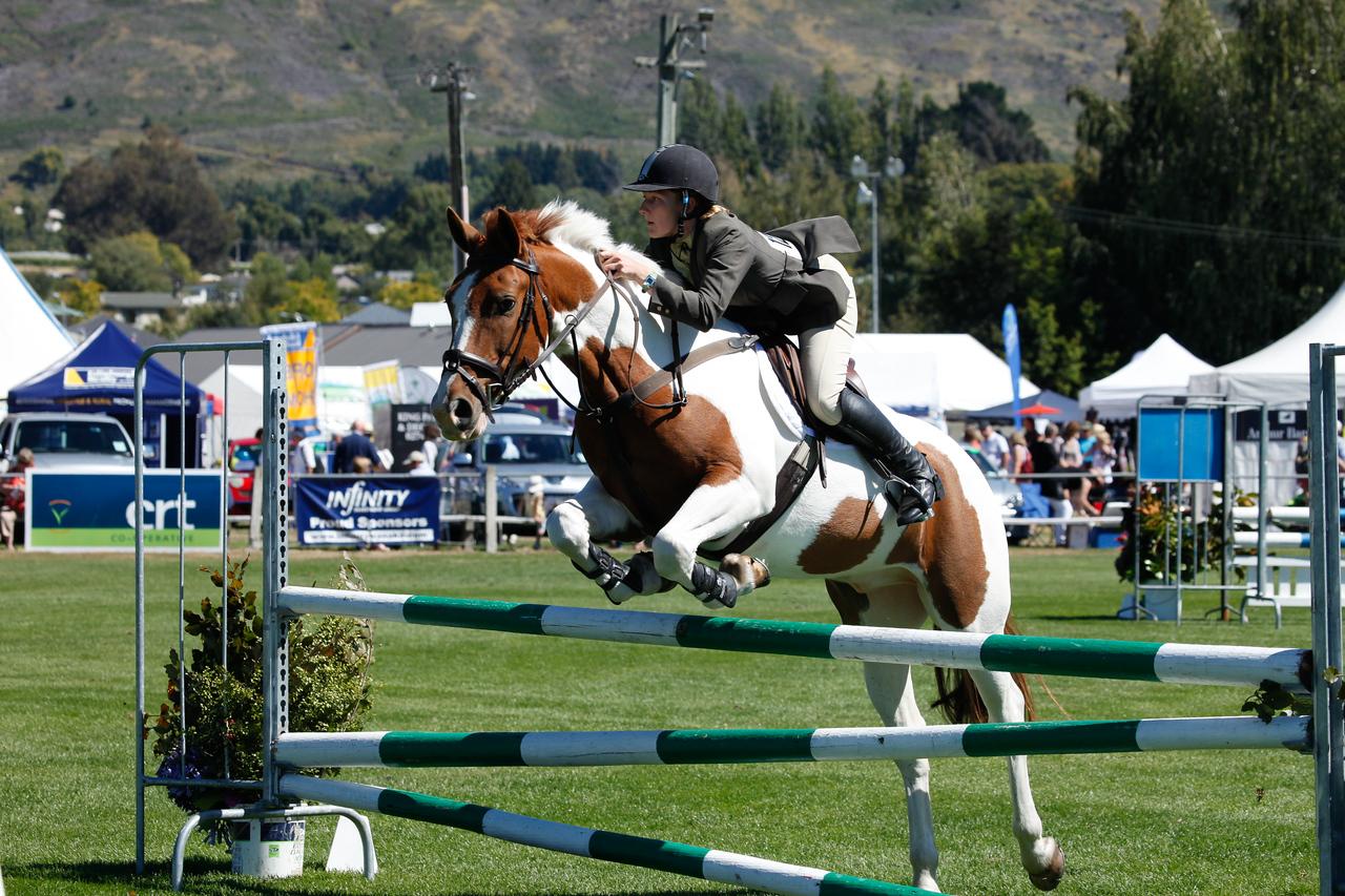 WAP Fri-Horse TA5_8322