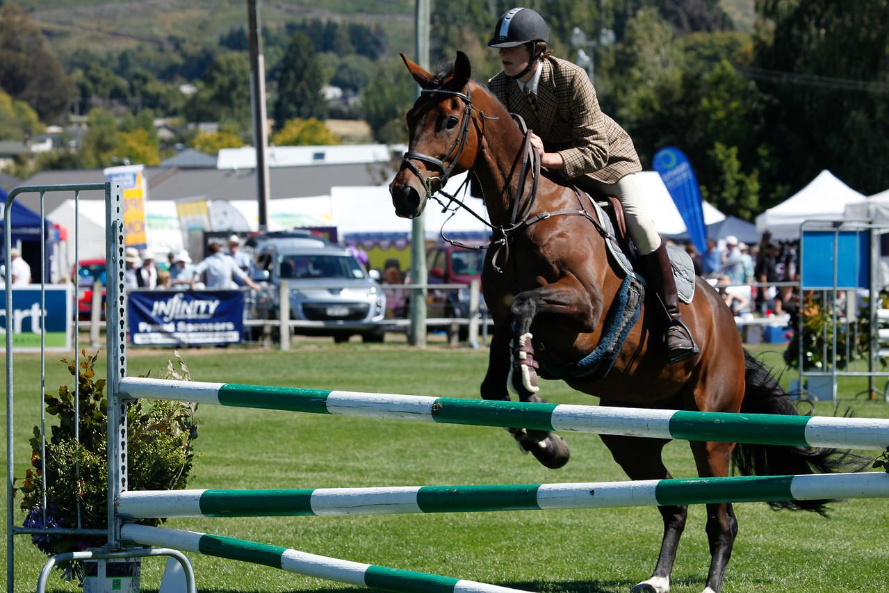 WAP Fri-Horse TA5_8340