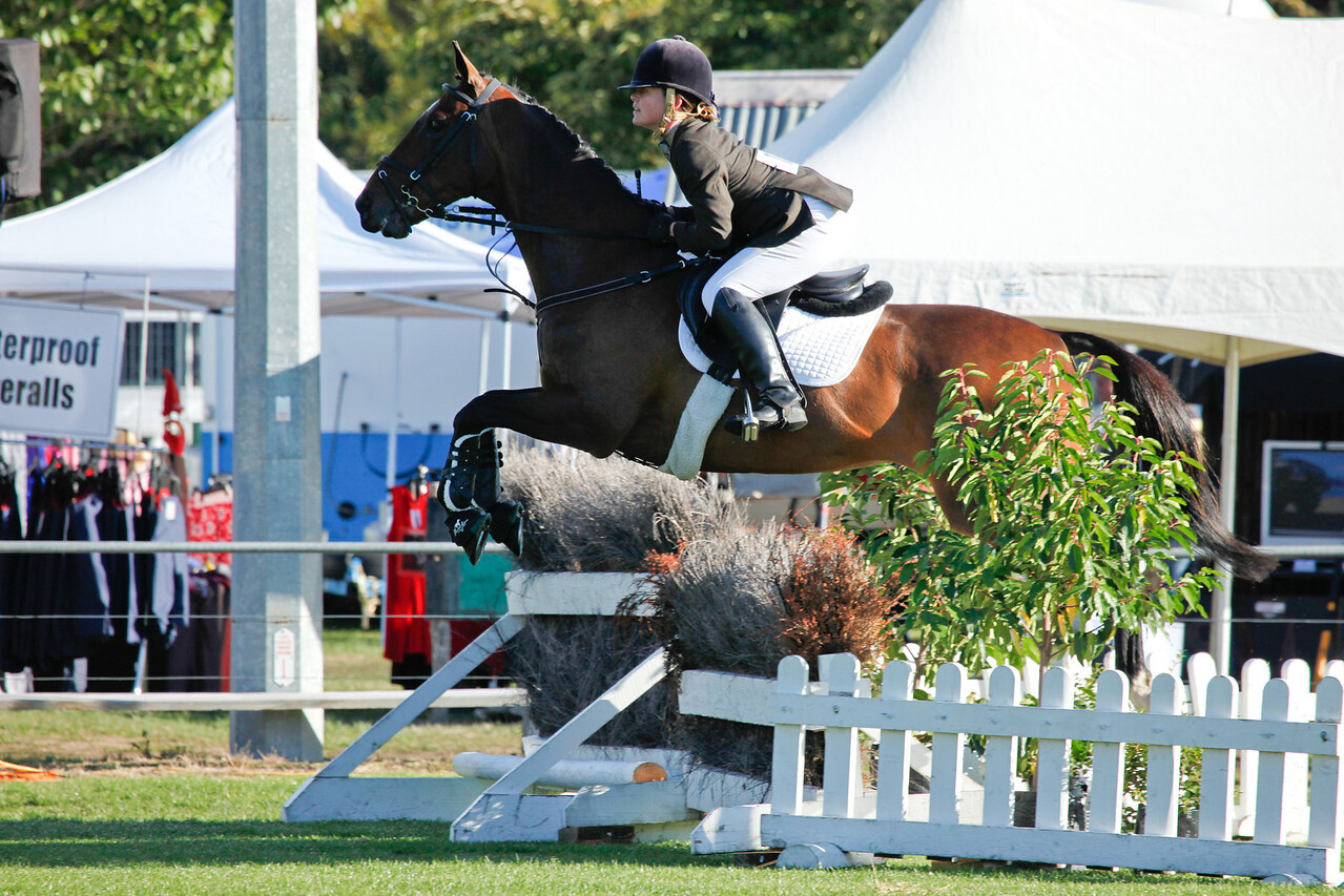 WAP Fri- Pony RTR_7778