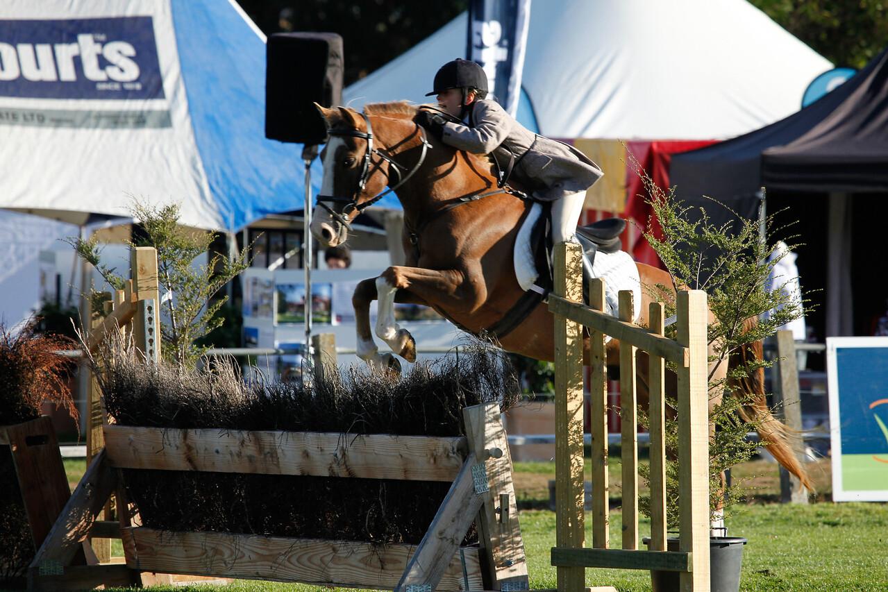WAP Fri- Pony RTR_7752