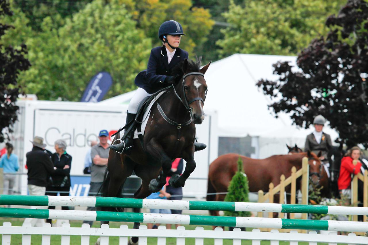 WAP Sat_NZEF TA5 Pony 1m_9255