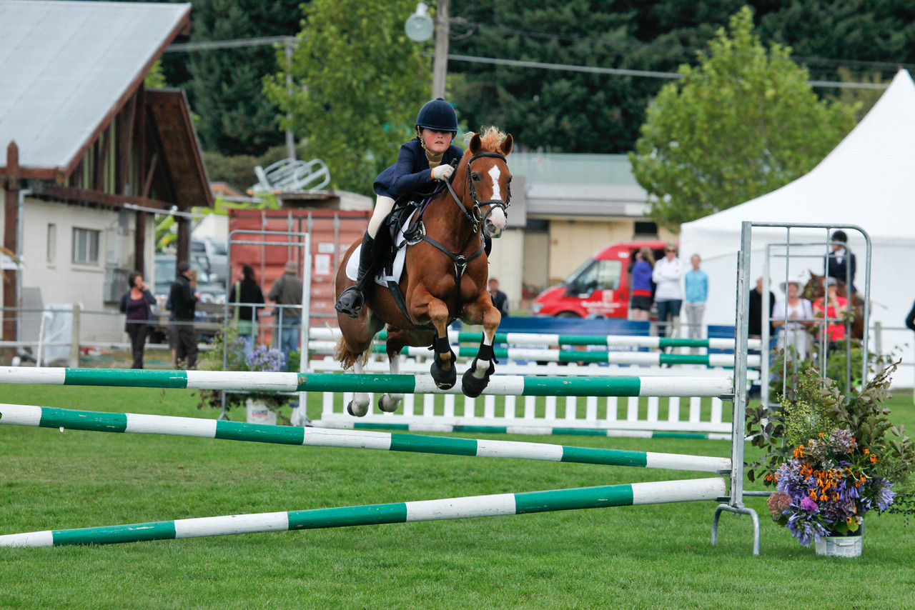 WAP Sat_NZEF TA5 Pony 1m_9251