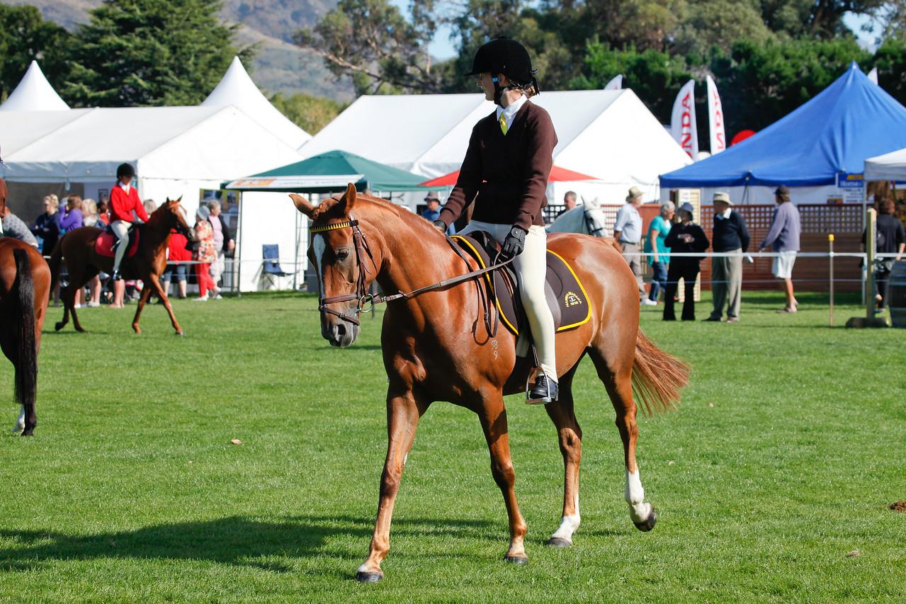 WAP Fri- Pony Club Riders_8004