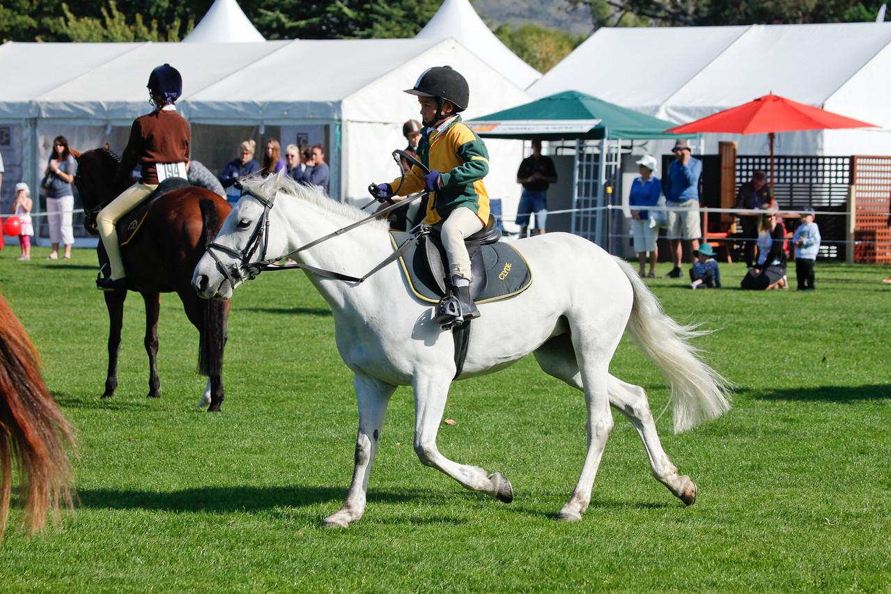 WAP Fri- Pony Club Riders_8015