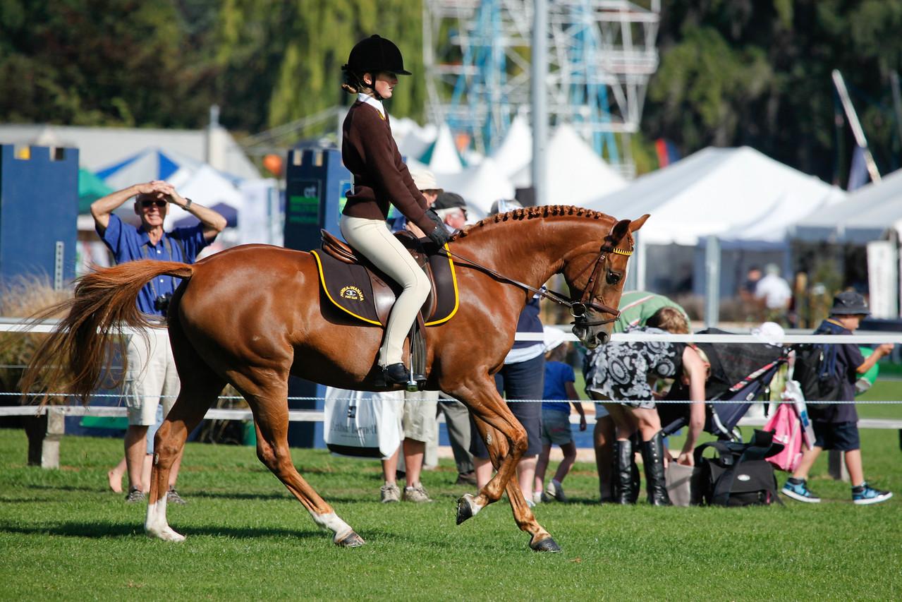 WAP Fri- Pony Club Riders_8018