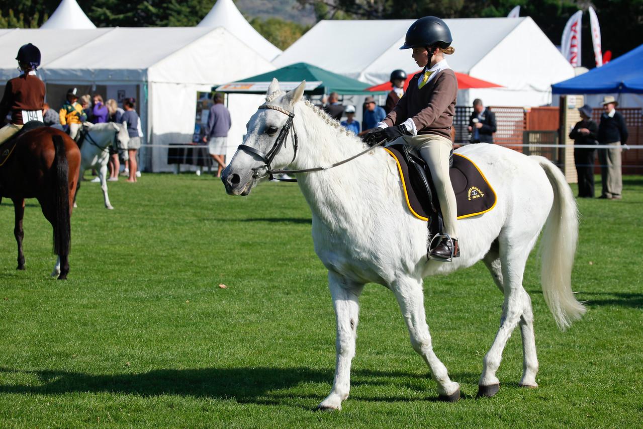 WAP Fri- Pony Club Riders_8006