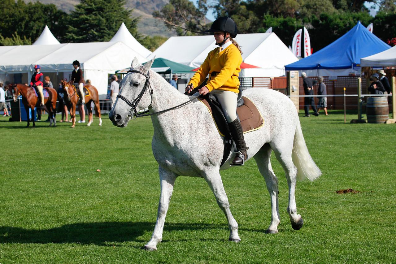 WAP Fri- Pony Club Riders_7988
