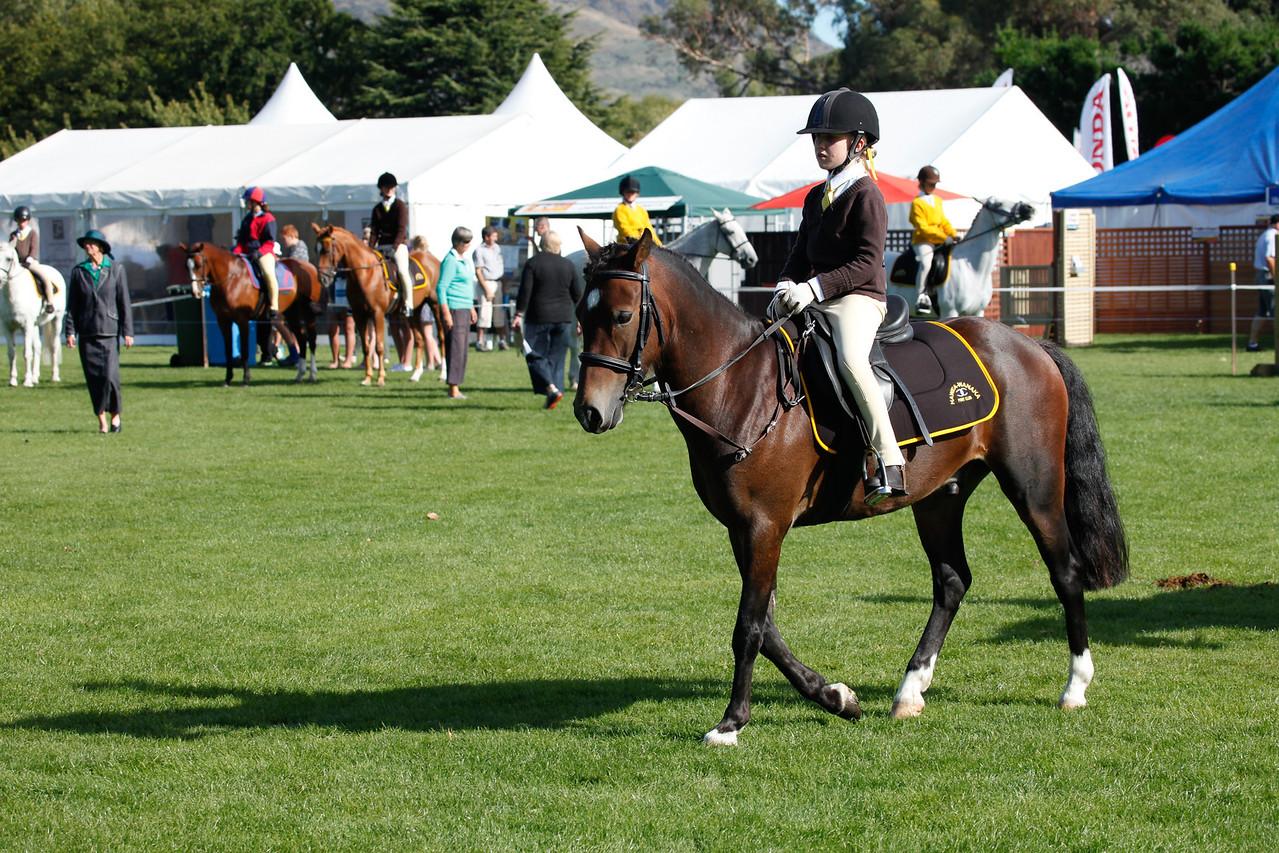 WAP Fri- Pony Club Riders_7983