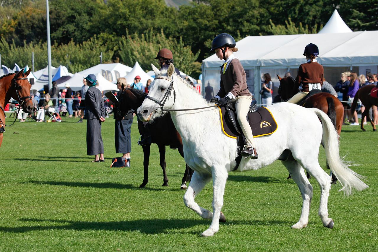 WAP Fri- Pony Club Riders_8013