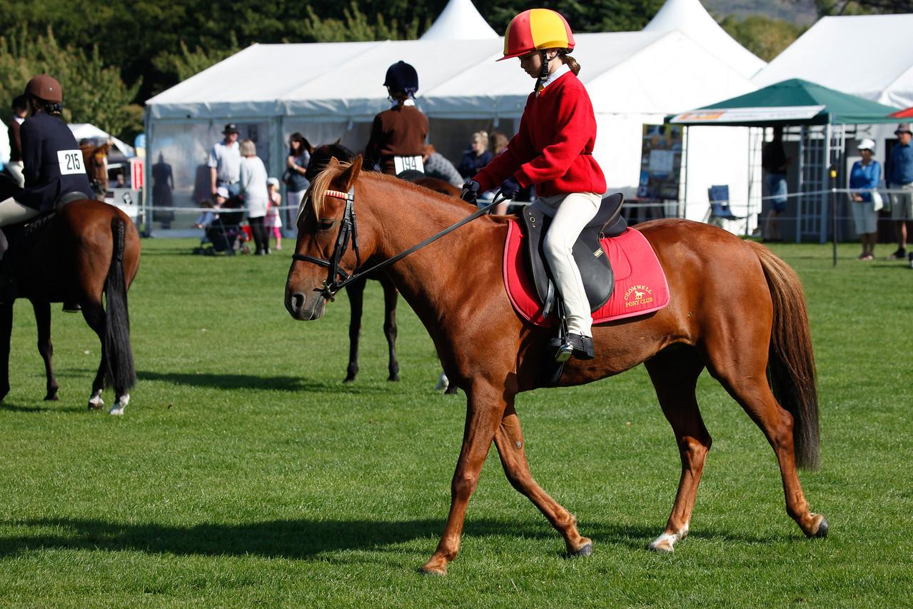 WAP Fri- Pony Club Riders_8009