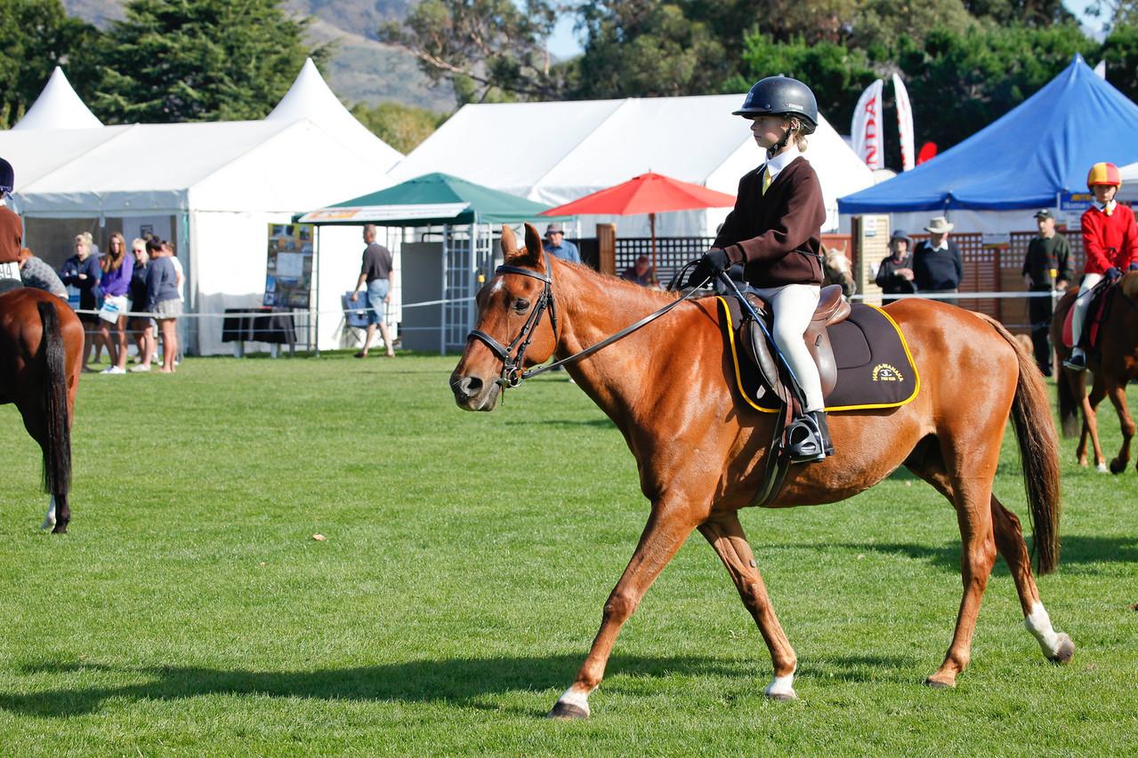 WAP Fri- Pony Club Riders_8008