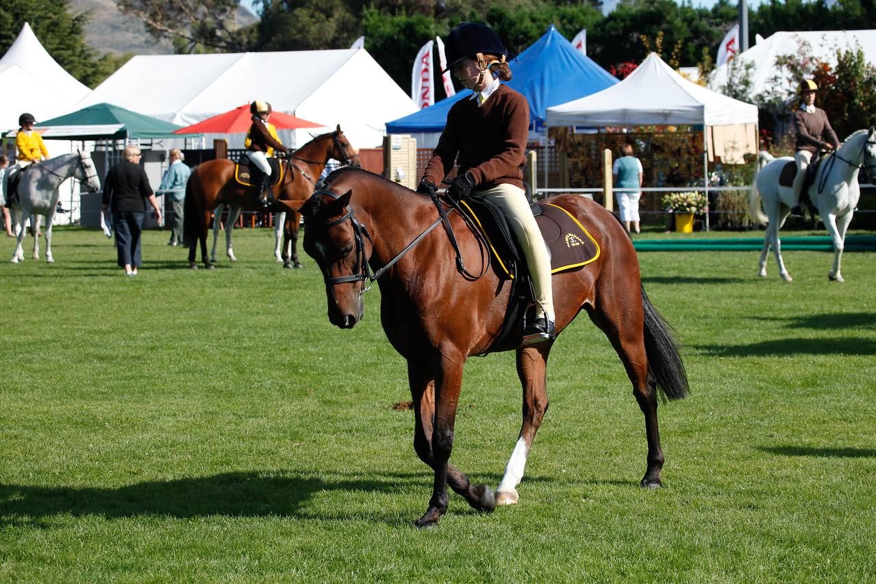 WAP Fri- Pony Club Riders_7982