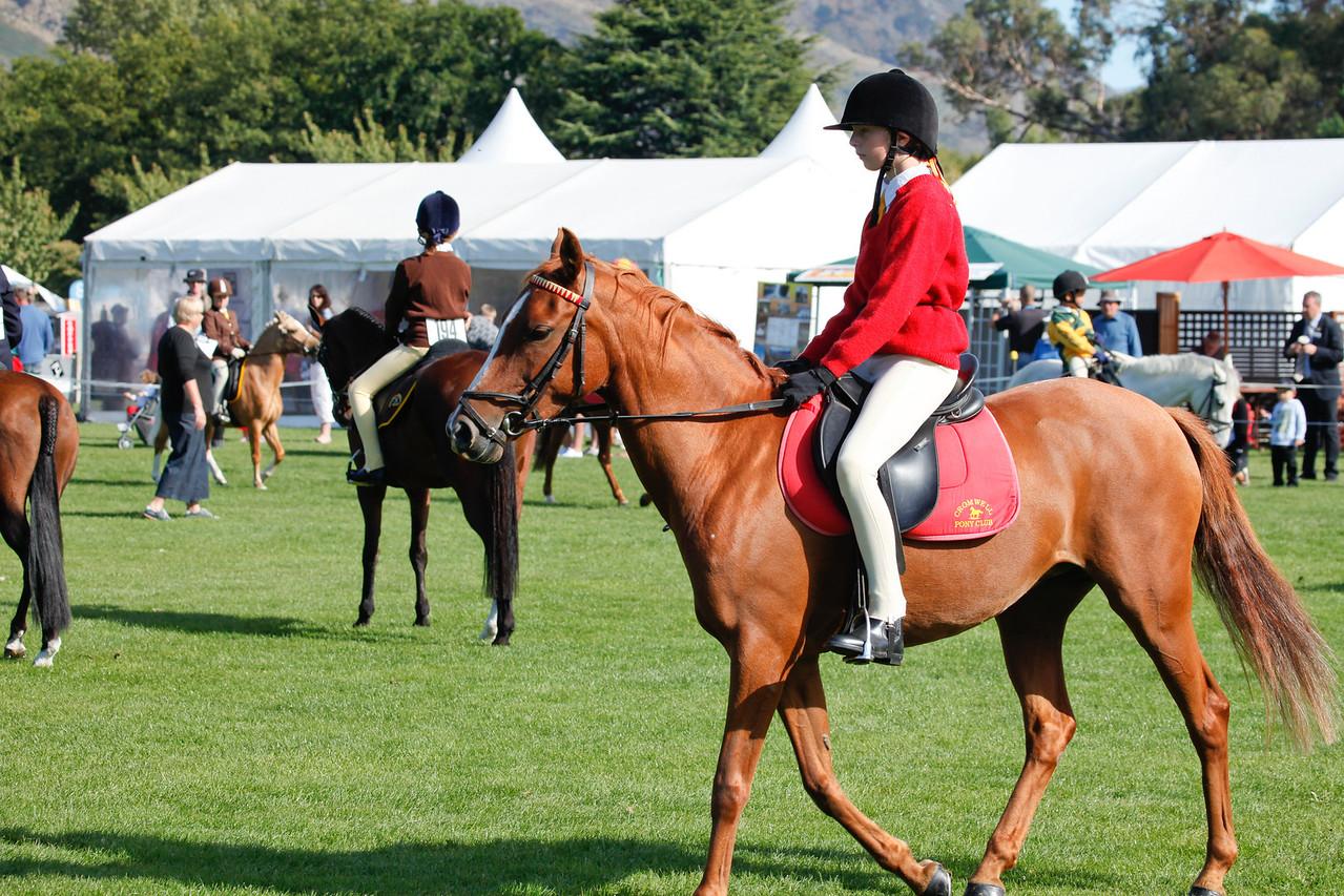 WAP Fri- Pony Club Riders_8007