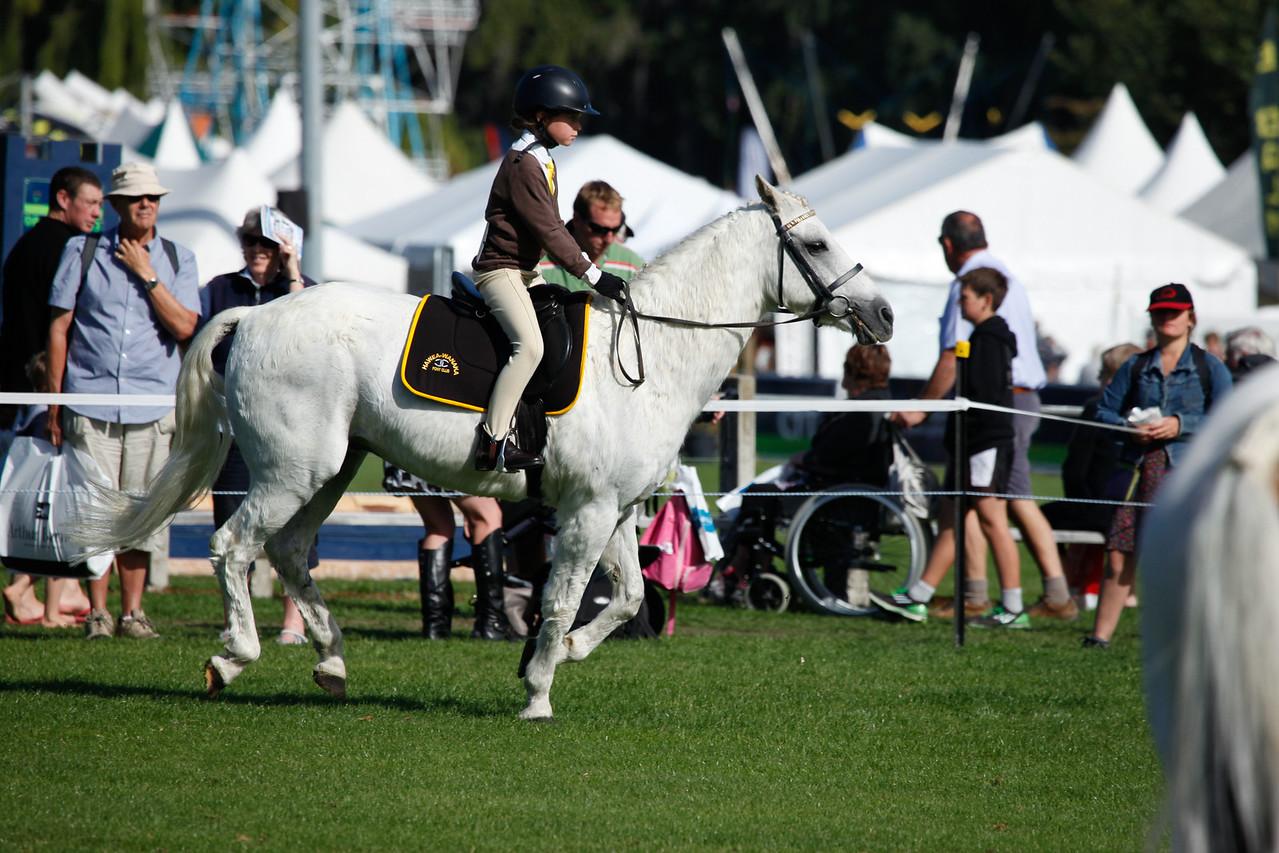 WAP Fri- Pony Club Riders_8020
