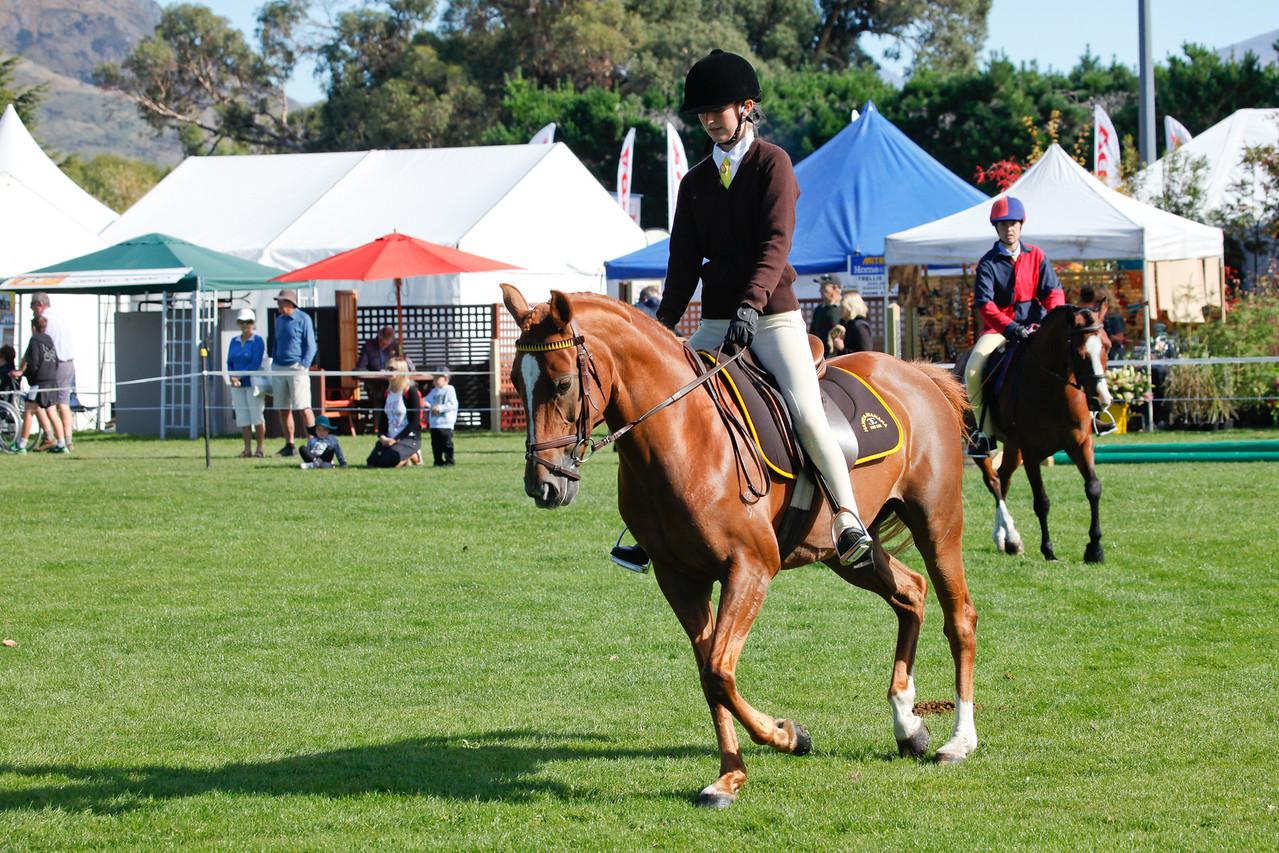 WAP Fri- Pony Club Riders_8011