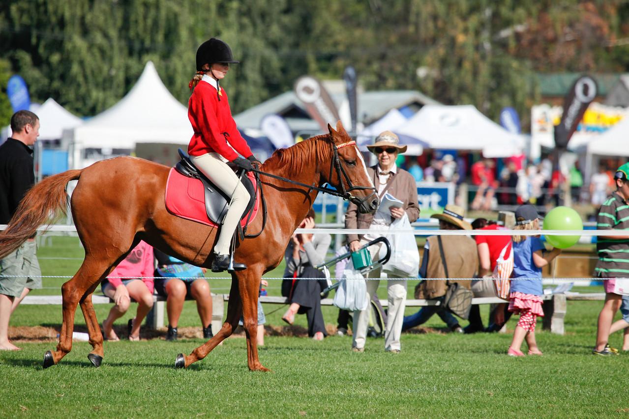 WAP Fri- Pony Club Riders_8016