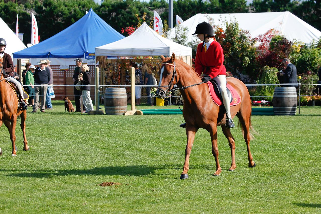 WAP Fri- Pony Club Riders_8014